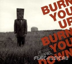Peter Gabriel - Burn You Up, Burn You Down [Single] (2003)