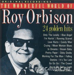 Roy Orbison - The Wonderful World Of Roy Orbison - 24 Golden Hit (1989)
