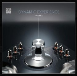 VA - Dynamic Experience Vol.1 (2011)